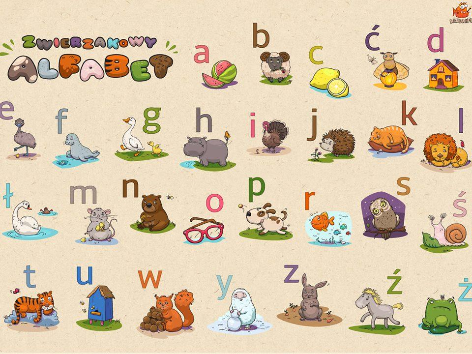 alfabet-portfolio-3