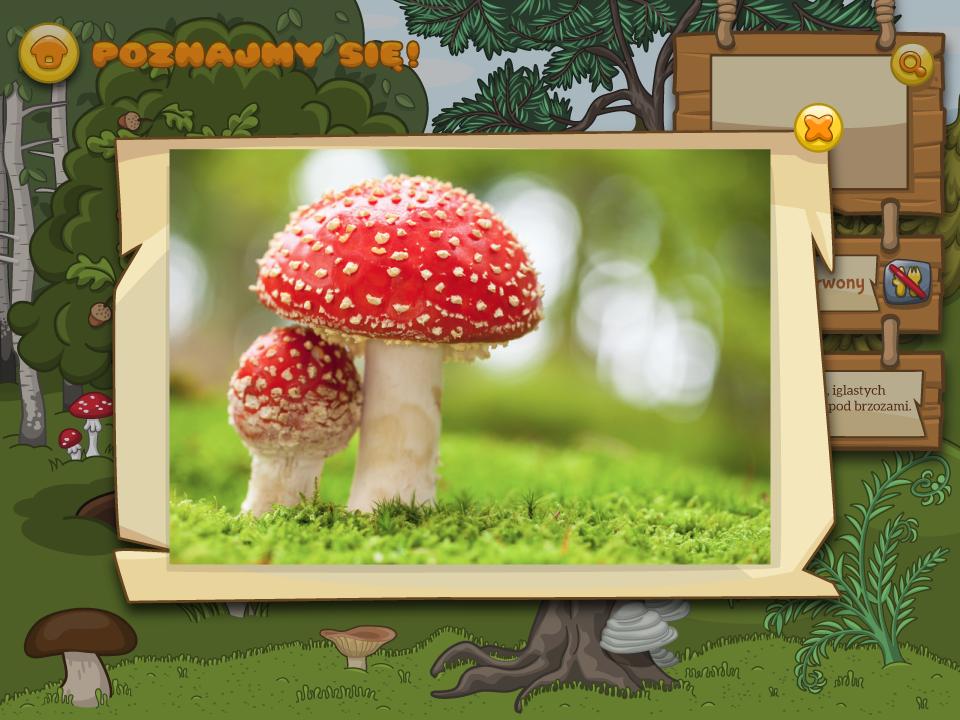 aplikacja edukacyjna - Grzyby plansza 2 ilustracje