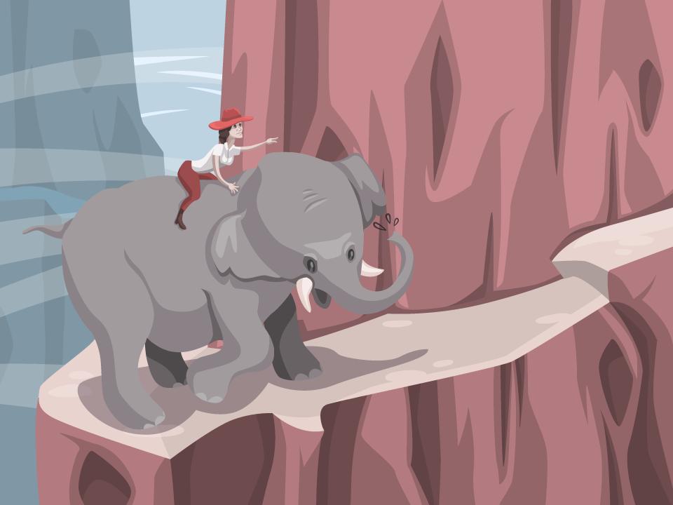 scjansen-portfolio-slon